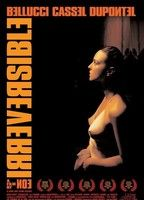 Irreversible 04ebcd68 boxcover