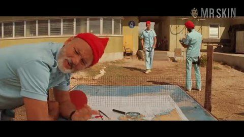Thelifeaquatic cohen hd 03 large 3