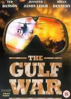 The gulf war aa8d353b boxcover